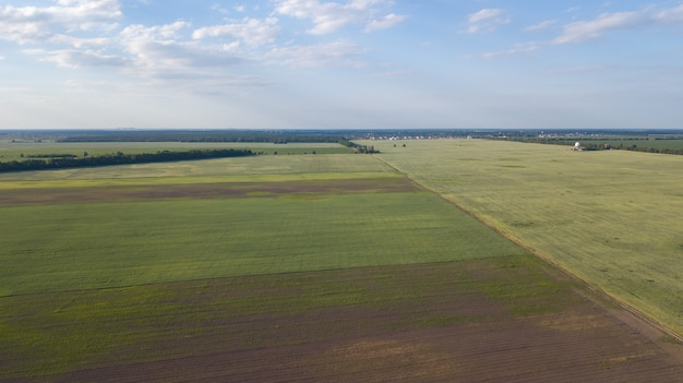 Ackerland von oben - luftbild eines üppigen grüns archiviert