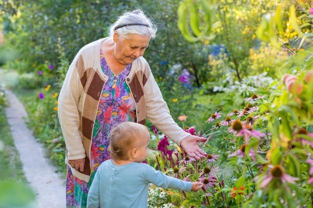 Ältere dame, die mit dem kleinen jungen im blühenden garten spielt. großmutter mit enkelkind, das blumen im sommer schaut und bewundert. kindergartenarbeit bei großeltern. urgroßmutter und urenkel.