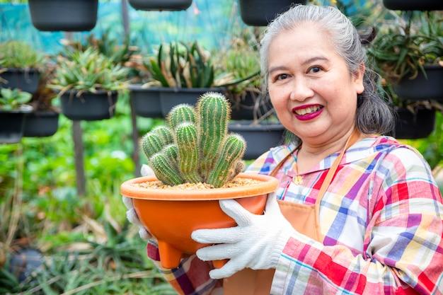 Ältere frau, die integrität des kaktusbaums betrachtet