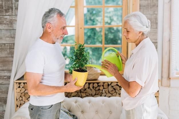 Ältere frau, die zu hause den topfpflanzengriff von seinem ehemann wässert