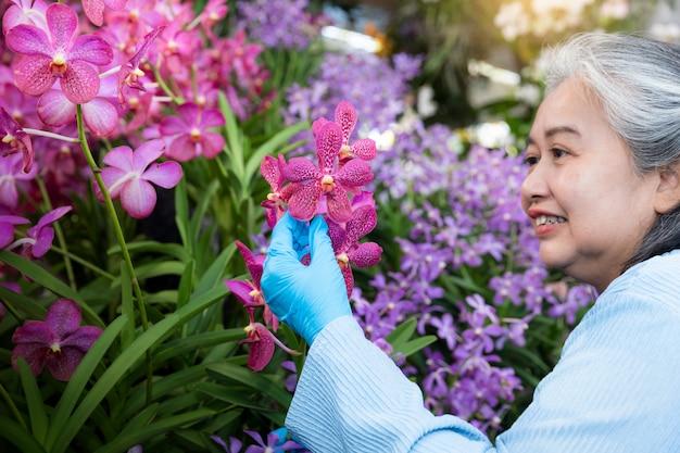 Ältere frau im ruhestand, die mit ihren blühenden orchideen im garten genießt. happy früh im ruhestand.