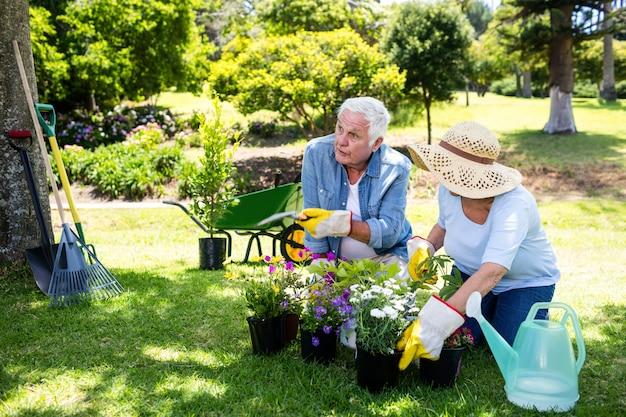 Ältere paare, die im park im garten arbeiten