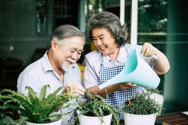 Ältere paare unterhalten sich und pflanzen bäume in töpfen.
