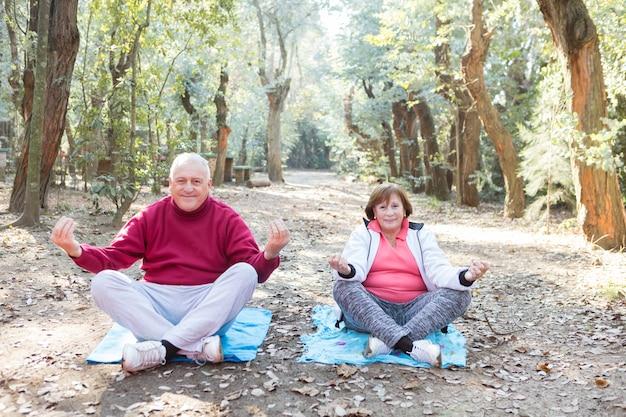 Ältere paare, yoga im park tut zusammen