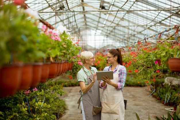 Ältere und junge moderne floristenfrauen, die eine digitale tablette betrachten