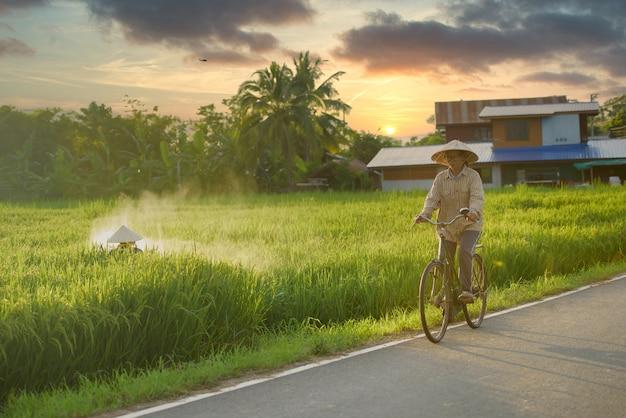 Älterer asiatischer landwirt, der fahrrad fährt