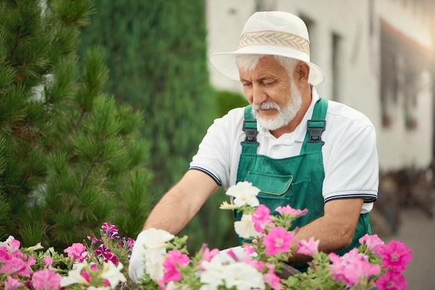 Älterer männlicher gärtner, der sich um blumen kümmert.