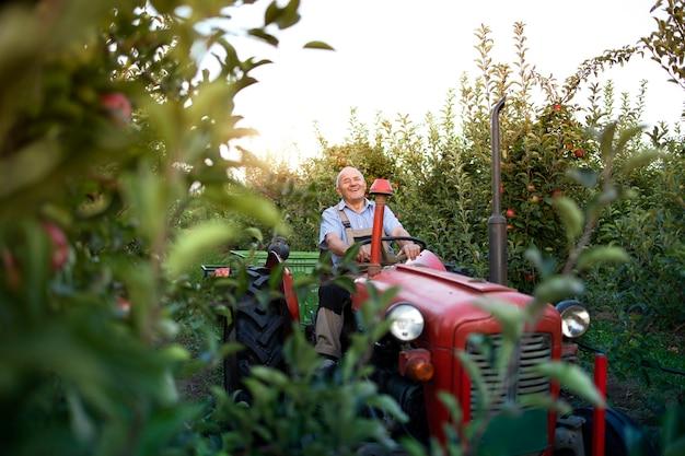 Älterer mann bauer, der seine alte traktormaschine im retro-stil durch apfelobstgarten fährt