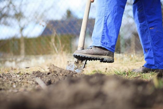 Älterer mann, der einen garten für neue pflanzen nach dem winter durch spaten gräbt