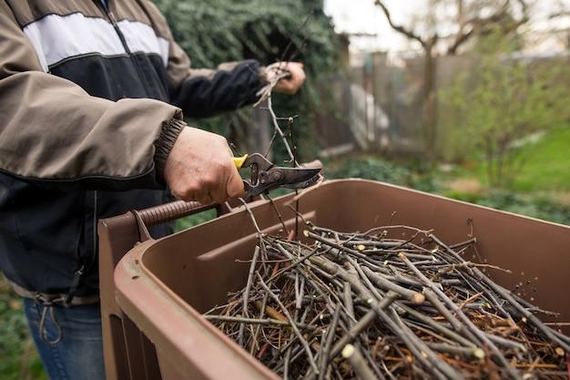 Älterer mann, der einige zweige vom baum zum organischen kompostbehälter schneidet