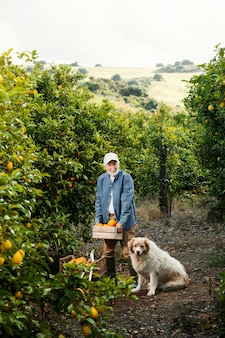 Älterer mann, der neben seinen orangenbäumen steht