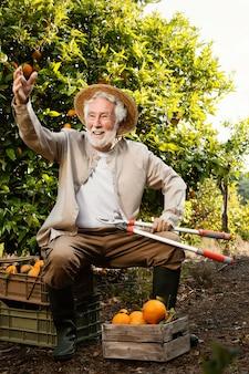 Älterer mann, der orangen kultiviert