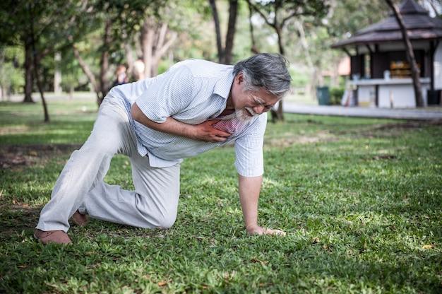 Älterer mann, der seinen kasten hält und die schmerz leiden unter herzinfarkt im park fühlt.