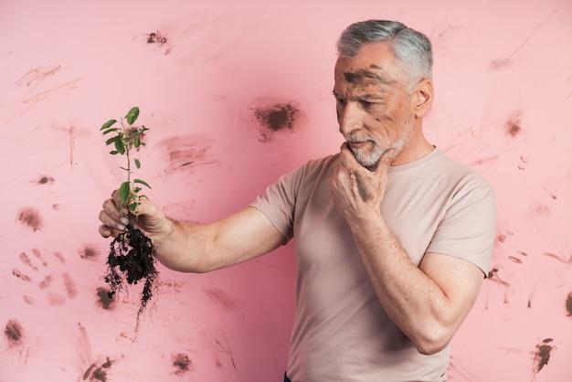 Älterer mann untersucht die pflanze