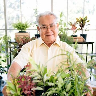 Älterer ruhestandsgärtner, der organische sämlinge und pflanzen auf seiner hand hält, mit lächeln und glück im innengarten.