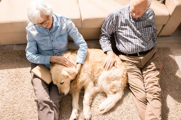 Älteres paar, das geliebtes haustier umarmt