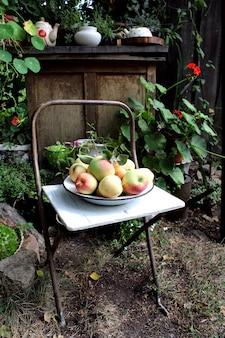 Äpfel auf einem stuhl im garten