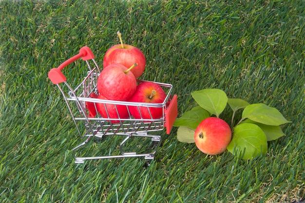 Äpfel kaufen. die äpfel im essenskorb