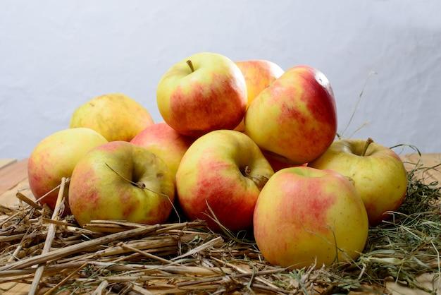 Äpfel zu apfelwein machen