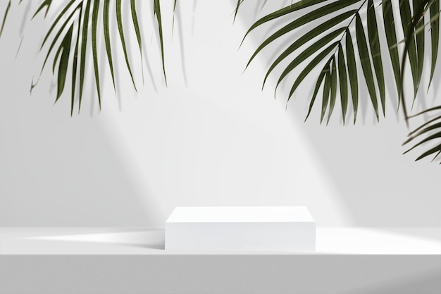 Ästhetische produktkulisse, palmblätter