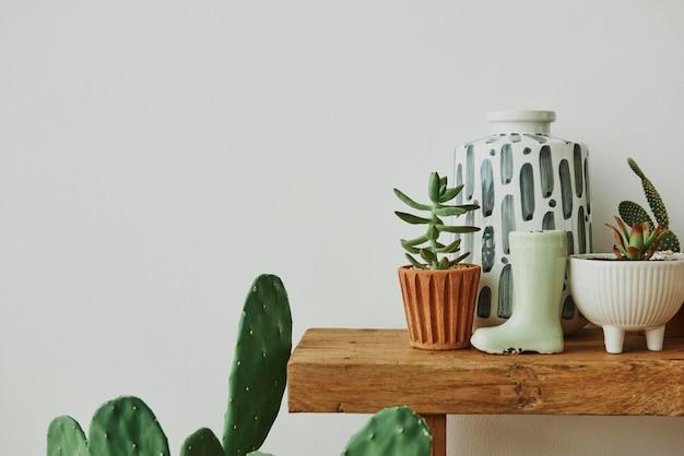 Ästhetisches zuhause mit kaktus und pflanzen auf einem holzregal
