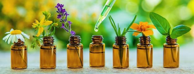 Ätherische öle und kräuterextrakte in kleinen flaschen. selektiver fokus. natur.