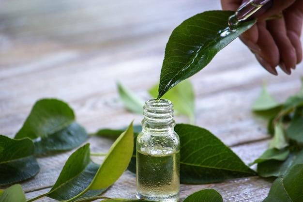 Ätherisches kräuteröl in einer kleinen flasche, natur. selektiver fokus