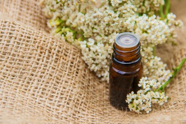 Ätherisches schafgarbeöl eine kleine flasche