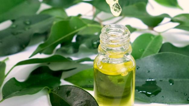 Ätherisches teebaumöl in kleinen flaschen. selektiver fokus. natur