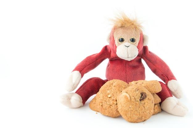 Affe ist so geizig mit seinen keksen. er wird treffen, wenn jemand in die nähe kommt.