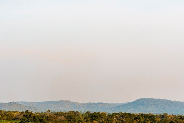 Afrikanische naturlandschaft mit himmel in der dämmerung