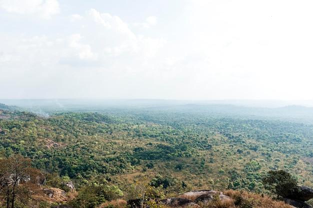 Afrikanische naturlandschaft mit vegetation