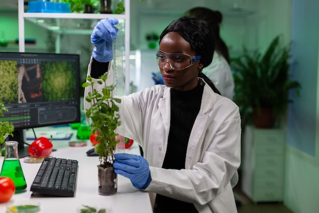 Afrikanischer amerikanischer biochemiker, der schösslinge mit lineal misst, die genetisch veränderte pflanzen während des biochemischen experiments analysieren. chemiker, der im biologischen krankenhauslabor arbeitet