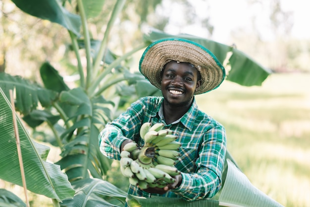 Afrikanischer landwirt, der banane am biohof hält