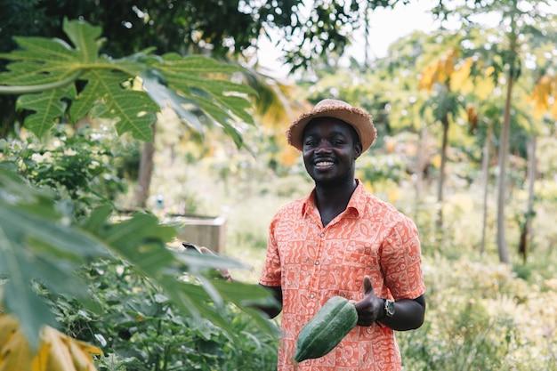 Afrikanischer landwirt, der papaya und smartphone am biohof hält