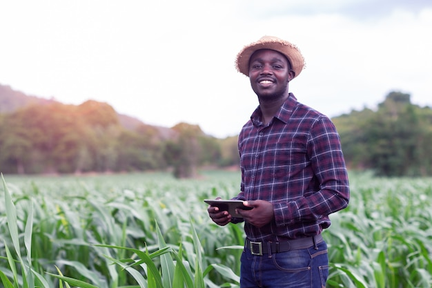 Afrikanischer landwirtstand im grünen bauernhof mit dem halten der tablette