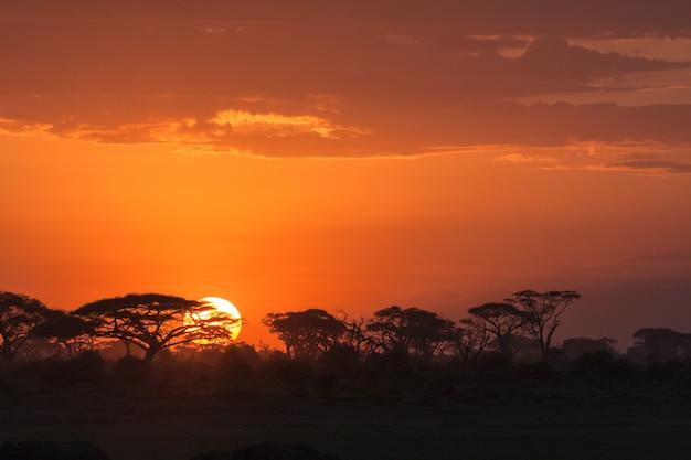 Afrikanischer sonnenaufgang bei sonnenaufgang