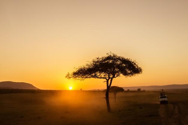 Afrikanischer sonnenaufgang mit akazienbäumen und safariauto in masai mara, kenia.