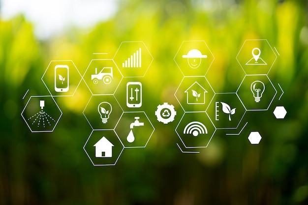 Agrartechnologie-konzeptmann agronom, der eine tablette verwendet