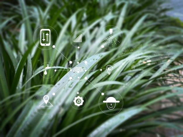 Agrartechnologie-konzeptmann-agronom mit einem tablet-internet der dinge-bericht