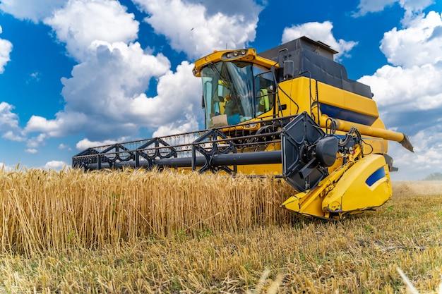 Agriulture-prozess im weizenfeld. schwere technik. ländliche landschaft. erntezeit.