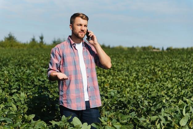 Agronom, der die sojabohnenernten kontrolliert, die auf dem landwirtschaftlichen feld wachsen. produktionskonzept der landwirtschaft. der junge agrarwissenschaftler untersucht im sommer die sojabohnenernte auf dem feld. bauer auf sojabohnenfeld