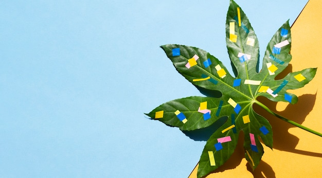 Ahornblatt mit farbigem lackexemplarplatz