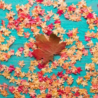 Ahornblattzusammensetzung auf farbigem hölzernem hintergrund
