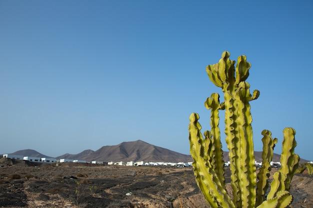 Ajaches berg in playa blanca lanzarote