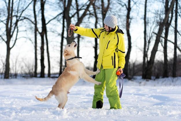 Aktiver junger retrieverhund, der im winter mit einer glücklichen frau draußen spielt