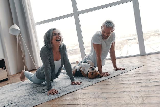 Aktives seniorenpaar in sportkleidung, das yoga macht und lächelt, während es zeit zu hause mit seinem hund verbringt