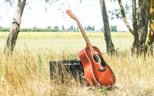 Akustische gitarrennatur, das konzept von musik und natur