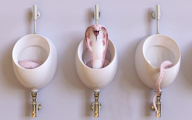 Albino-königskobraschlange der illustration 3d in den bidets