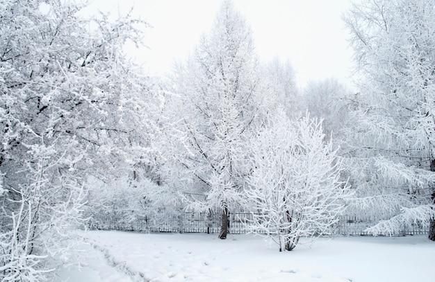 Alles mit schnee bedeckt. fabelhaftes weihnachten
